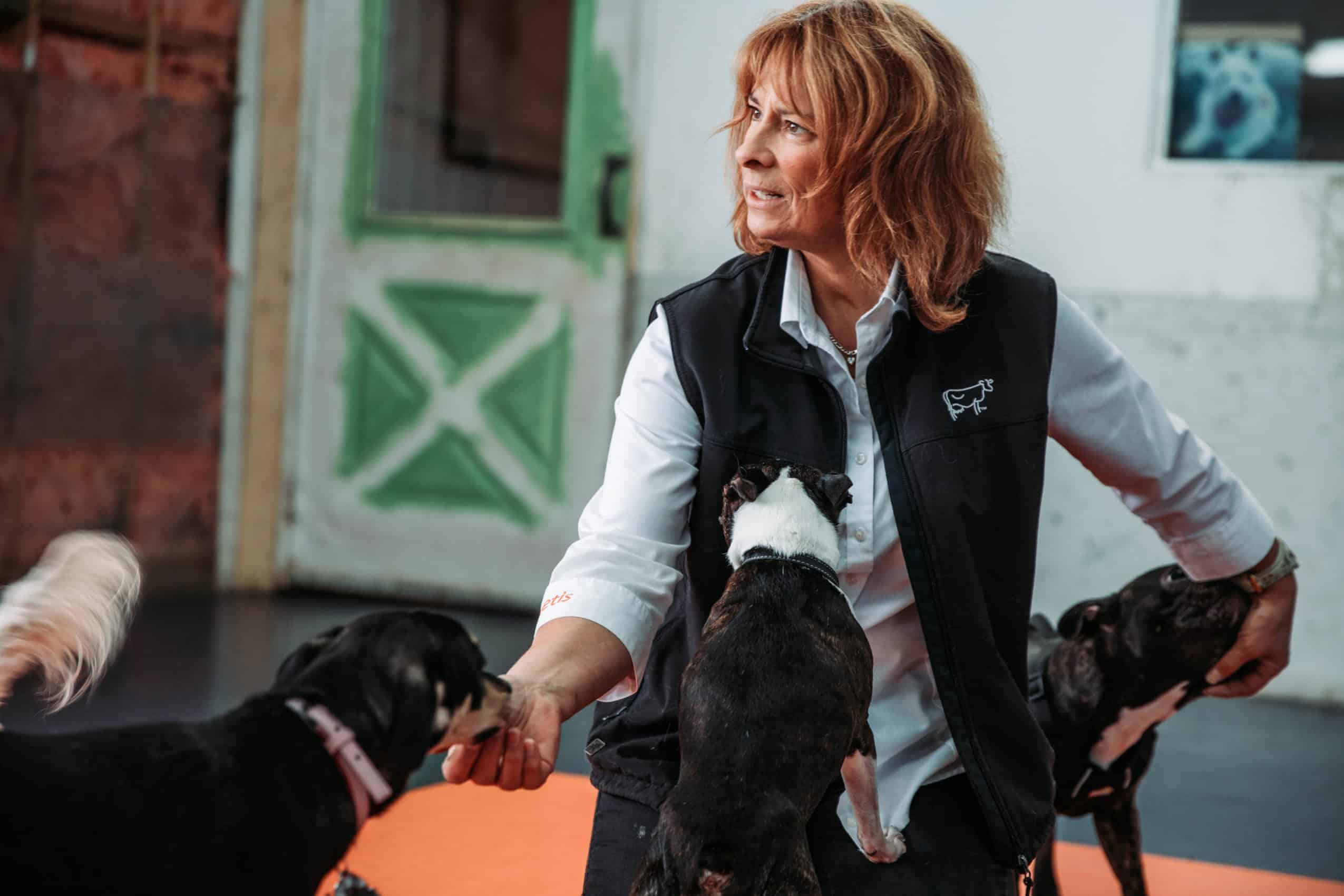 centre laka pension pour chien (4)